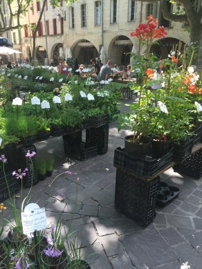 Wednesday market flower and produce day in Uzes